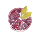 Citrus Sweet by Kristine Hegre