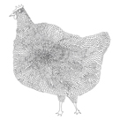 The Chicken by Virginia Kraljevic