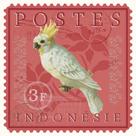 Exotic Birds III by Gwen Aspall