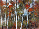 Silver Birches III by Richard Akerman