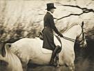 Vintage Equestrian - Piaffe by Pete Kelly