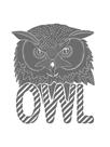 Linear - Owl by Myriam Tebbakha