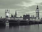 Westminster by Night by Assaf Frank