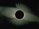 Total Eclipse of the Sun by Etienne Leopold Trouvelot