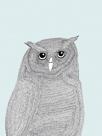 Linear Friends - Owl by Virginia Kraljevic