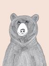 Linear Friends - Bear by Virginia Kraljevic