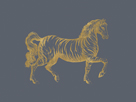 Equus Indicus by The Drammis Collection