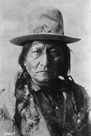 Sitting Bull by The Chelsea Collection