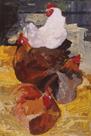 Roosting Hens by Anuk Naumann