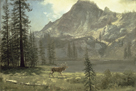 Call of the Wild by Albert Bierstadt