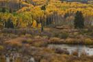 Kebler Autumn Rain by Michael Greene