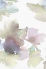 Floral Vision I by Tanuki