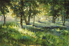 Sunlit Glade by Martha Saudek