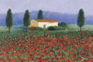 Montefiorale, Tuscany by Hazel Barker