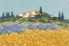 Santa Lucia, Tuscany by Hazel Barker