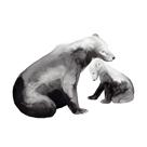 Bear Hug by Susanna Hoikkala