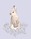 Blossom Bunny by Salla Tervonen