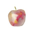 Apple Crunch by Kristine Hegre