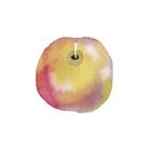 Apple Sweet by Kristine Hegre