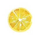 Citrus Slice by Kristine Hegre