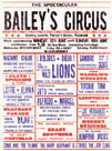 Baileys Circus by The Vintage Collection