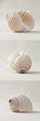 Seashell Trio III by Assaf Frank