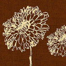 Chrysanthemum Square III by Alice Buckingham