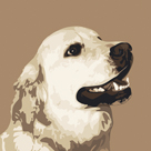 Golden Retriever by Emily Burrowes