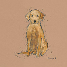 Doggy Tales VI by Clare Ormerod