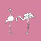 Flamingo Duo - Blush by Sandra Jacobs