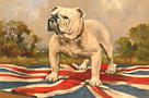 The British Bulldog by 19th Century English School