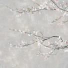 Blossom Spray III by Tania Bello