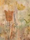 Botanica I by Dysart