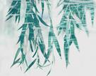 Bamboo Calm by Tania Bello