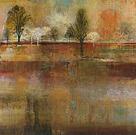 Tree Shadows II - Detail by Douglas