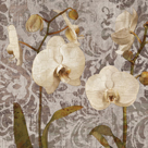Damask Blooms I by Tania Bello