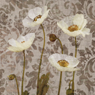 Damask Blooms III by Tania Bello