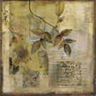 Botanical Motif I by Augustine