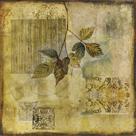 Botanical Motif IV by Augustine