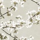 Confetti Bloom II by Tania Bello