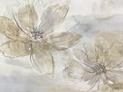 Cosmos Flourish I by Tania Bello