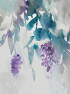Delicate Wisteria by Tania Bello