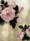 Blush Blooms by Tania Bello