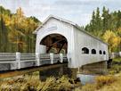 Backwoods Bridge by Mark Chandon